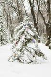 New Year tree Royalty Free Stock Photos