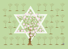 New Year of trees or Tu bi-Shvat. In Israel in Tu bi-shvat (New Year of trees) entered in tradition to seat trees. Children and new repatriates are engaged in Royalty Free Stock Image