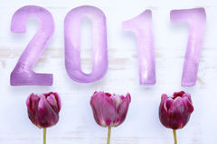 New Year 2017 on white board and purple tulips Stock Photos