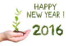 New year 2016. Woman hand, holding a seedling and number two thousand sixteen - New year 2016 and words of congratulation Happy New Year. All numbers and words royalty free stock photo