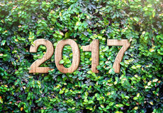 2017 new year wood texture number on Green leaves wall backgroun Royalty Free Stock Photo