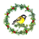 New year wreath - fir, mistletoe and tit bird. Watercolor. Fir tree, mistletoe and birds . Watercolor hand made desig Royalty Free Stock Image