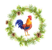 New year wreath, rooster cock and christmas tree branches. Watercolor Stock Photo