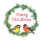 New year wreath - spruce, bullfinch and tit bird. Watercolor Royalty Free Stock Images