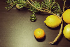 New Years background. With a decorative Christmas tree, a branch of pine needles and citrus Royalty Free Stock Images