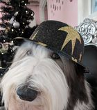 New Years Dog. Celebrate New Years Eve with A fluffy dog stock images