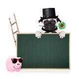 New years eve dog. Pug dog as chimney sweeper with four leaf clover  behind blackboard or placard,  celebrating and toasting for new years eve, isolated on white Royalty Free Stock Photography