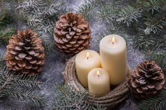 New Years theme with candles and christmas tree Royalty Free Stock Image