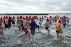 New years traditional swimming on fisrt januari Royalty Free Stock Photos