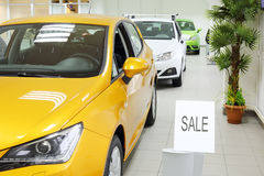New yellow, white and green shining cars stand near palm tree stock images