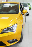 New yellow, white and green shining cars stand in office Royalty Free Stock Photo