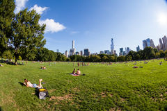 NEW YORK - AUGUST 22. Views of the from the big meadow Central Park to Midtown New York on August 22, 2015. The Central Park is a famous Park in the centre of Royalty Free Stock Image
