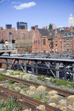 New York buildings. New York City city buildings and roofs next to the High Line Stock Image