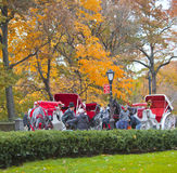 New York Carriages Royalty Free Stock Photo