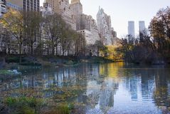 New York Central Park. In Autumn Stock Photography