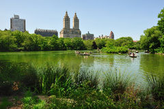 New York - Central Park stock image