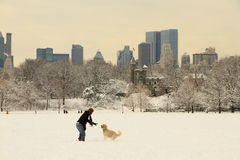 New York Central Park nach Schnee
