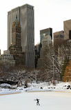 New York Central Park after snow Stock Image