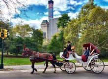 New York, Central Park, U.S.A. Fotografie Stock Libere da Diritti