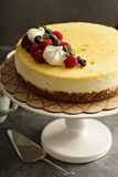 New York cheesecake on a cake stand Royalty Free Stock Images