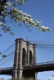 New York City. image stock