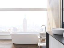 New York City badrum Fotografering för Bildbyråer