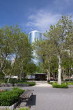 New York City, Battery Park area. Trees and Skyscrapers on a sun Royalty Free Stock Images