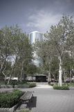 New York City, Battery Park area. Trees and Skyscrapers on a sun Stock Photo