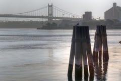 New York City bridge Stock Photography