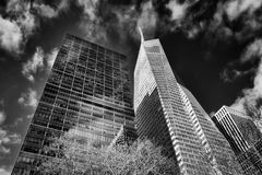 New York City Building B&W royalty free stock photos