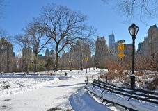 New York City Central Park alley in winter. New York. Royalty Free Stock Photo