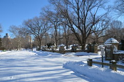 New York City Central Park alley in winter. New York. Royalty Free Stock Photos