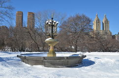 New York City Central Park alley in winter. New York. Royalty Free Stock Images