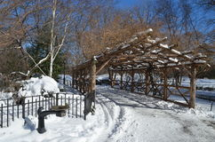 New York City Central Park alley in winter. New York. Royalty Free Stock Photography