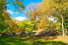 New York City Central Park in autumn Stock Photo