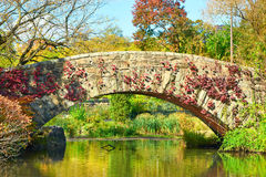 New York City Central Park in autumn Royalty Free Stock Images