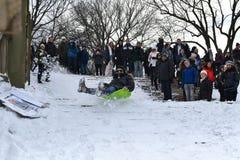 1/24/16, New York City : Central Park d'inondation de Sledders après tempête Jonas d'hiver Photographie stock libre de droits