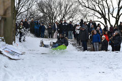 1/24/16, New York City: Central Park de la inundación de los Sledders después de la tormenta Jonas del invierno Fotografía de archivo libre de regalías