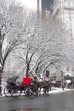 New York City Central Park en hiver Photo libre de droits