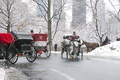 New York City Central Park en invierno Foto de archivo libre de regalías