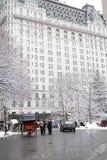 New York City Central Park en invierno Fotografía de archivo