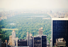 New York City Central Park in the fog Stock Photography