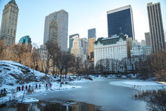 New York City Central Park i snö Royaltyfri Fotografi