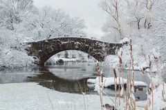 New York City Central Park i snöbro Arkivfoto