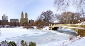 New York City - Central Park i vinter Arkivfoto
