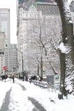 New York City Central Park i vinter Fotografering för Bildbyråer