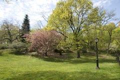 New York City, Central Park, NY Royalty Free Stock Photography