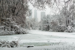 New York City Central Park in snow pond Royalty Free Stock Photography