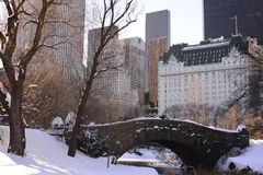 New York City and Central Park in Winter Stock Photo