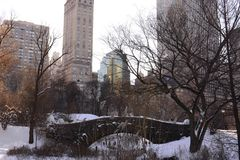 New York City and Central Park in Winter Stock Images